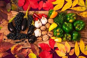 autumn colorful leaves. harvest season. rich table.