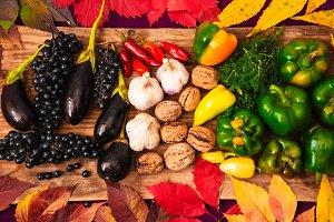 a rich autumn harvest. harvest season. vitamins