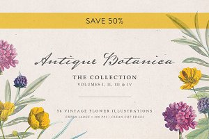 UPDATED - Antique Botanica Bundle