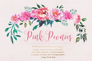 Pink Peonies Flower Clipart