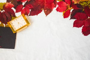 autumn leaves of red color. clock and a sheet of paper. background