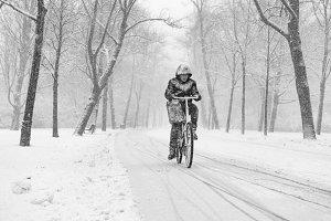 Man biking in a snowy Vondelpark.