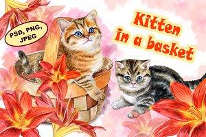 Kitten in a basket. Red lilies