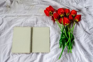 Clean notebook. Bouquet of tulips