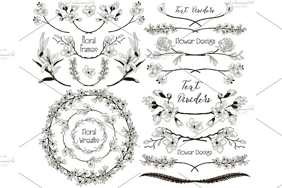 Big Collection of Floral Design Elements, Dividers, Frames in Objects