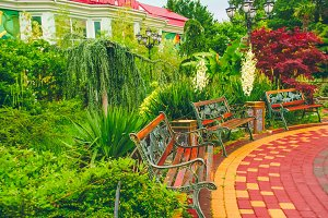Garden with tropical plants. Cloudy day after rain. Benches