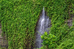 Amazing waterfalls of Bali.