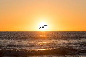 A sunrise in the sea