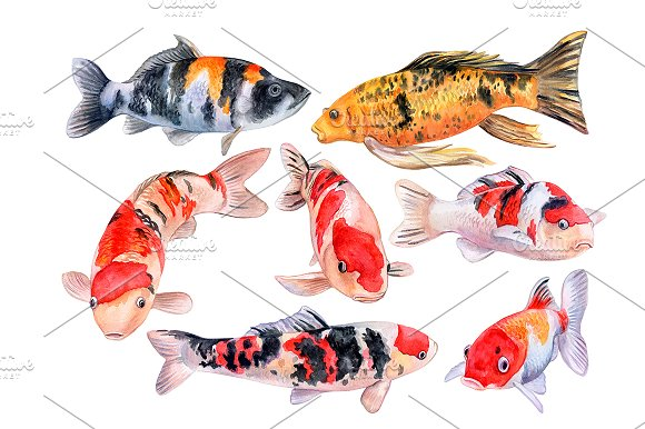 Koi carps. Water lilies in Patterns - product preview 4