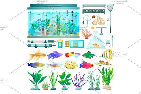 Aquarium and Fish Set of Icons Vector Illustration