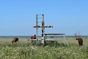Equipment of an oil well