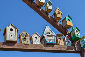 Birdhouses, houses for birds
