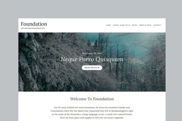 WordPress Non-Profit Themes: ThemePort - Foundation