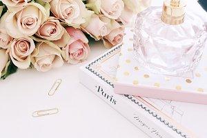 Blush / Rose
