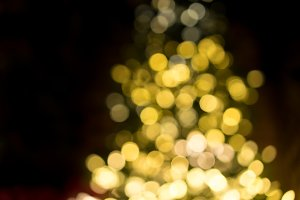 Defocused christmas tree for background