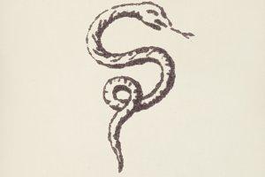 Snake icon (PSD)