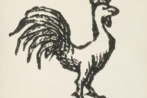 Cock icon (PSD)