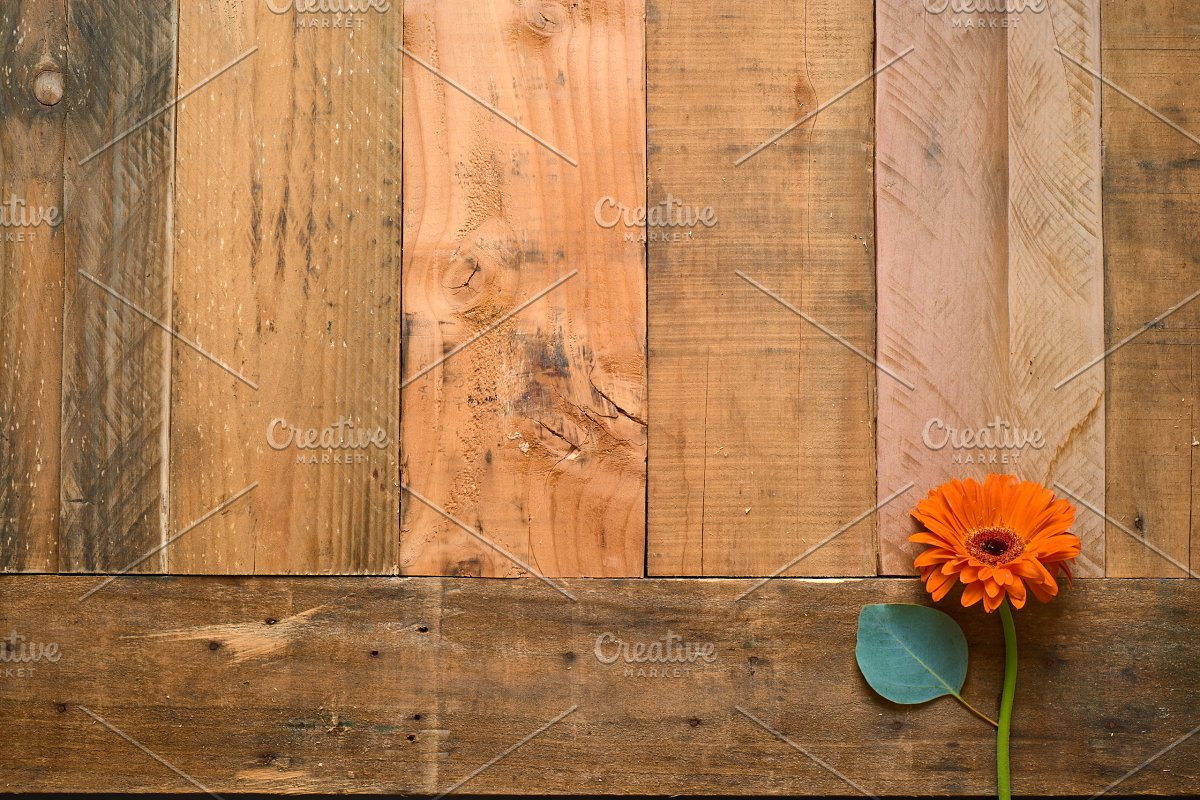 Rustic Flower Photo Set On Wood in Templates - product preview 2