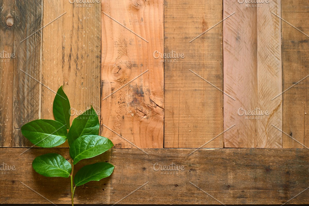 Rustic Flower Photo Set On Wood in Templates - product preview 4