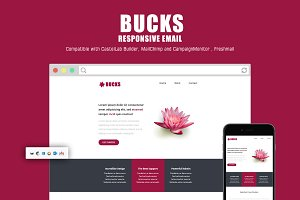Bucks Responsive Email Template