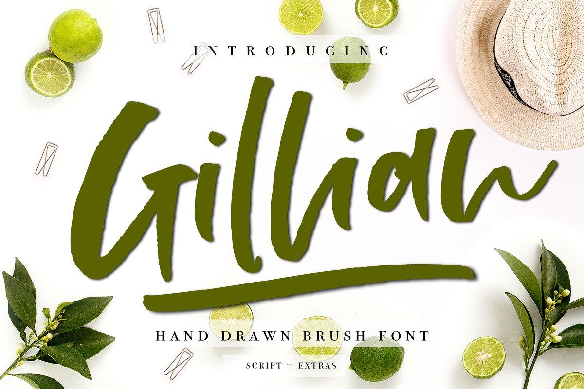 Gillian Font + Extras ~ Script Fonts ~ Creative Market