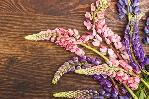 Violet and pink lupines on the wooden board