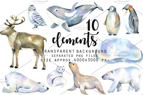 Polar animals. Watercolor clip art. in Illustrations - product preview 1