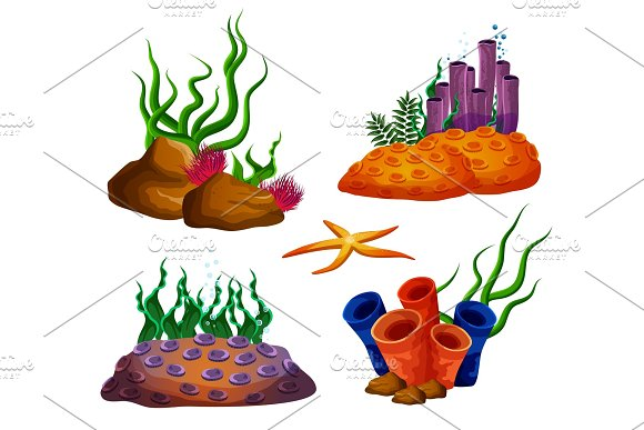Underwater ocean reefs or aquarium corals