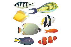 Underwater golden fishes and small sea fauna