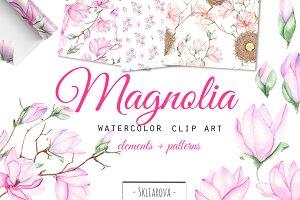 Spring Magnolia. Watercolor clip art