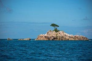 Island in the Indian ocean