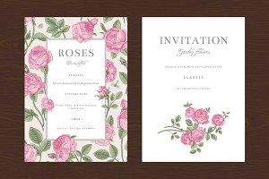 Pink Garden Roses. Vector set