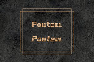 Pontem family-Regular-*50% off