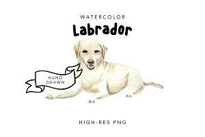 Labrador: Watercolor Dog Portrait