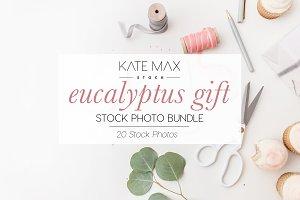 Eucalyptus Gift Stock Photo Bundle