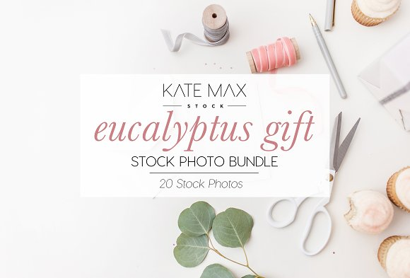 Eucalyptus Gift Stock Photo Bundle