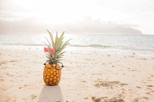 Funny Girl Pineapple 2