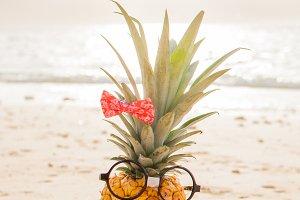 Funny Girl Pineapple
