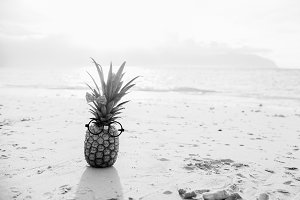 Funny Pineapple Black and White