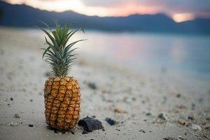 Pineapple on Sunset Beach