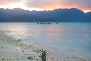 Sunset Beach & Mountains