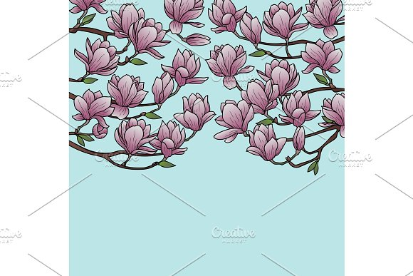 Magnolia Spring Composition in Illustrations