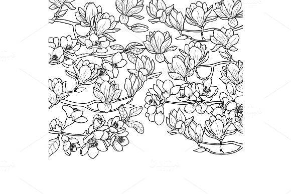 Magnolia and Cherry Spring Composition in Illustrations