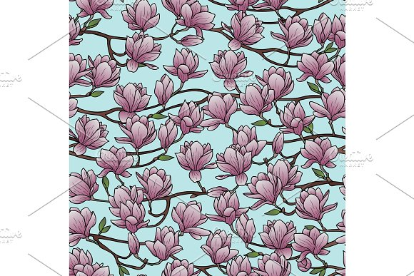 Magnolia Spring Seamless Pattern in Illustrations