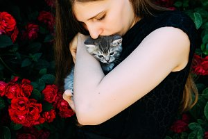 A girl with a British gray kitten on her hands