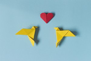Yellow Birds, Red Heart of origami