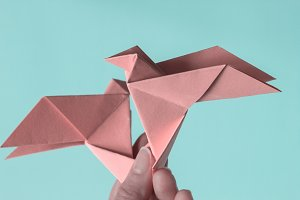 Pink Birds Origami on female hands