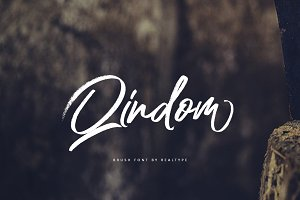 Qindom Brush Typeface