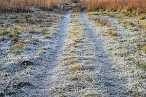 The road to the frosted grass. Frost on the road