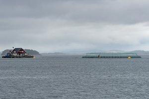 Norwegian industrial scale fish farming near Stavanger